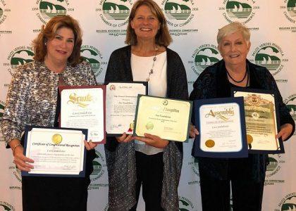 2018 Community Service Organization of the Year
